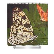 Cream And Orange Butterflies Shower Curtain