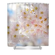 Creamy Blossoms Shower Curtain