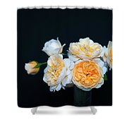 Creamy English Roses Shower Curtain