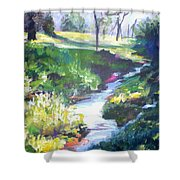 Creek Flow Shower Curtain