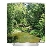 Creek In A Forest Shower Curtain