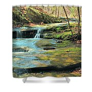 Creek In Dappled Light At Don Robinson State Park 1 Shower Curtain