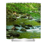 Creek In Great Smoky Mountains National Shower Curtain