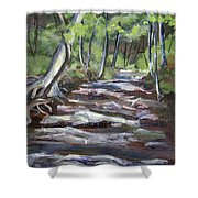 Creek In The Park Shower Curtain