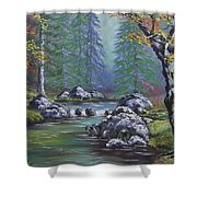 Creek In The Woods Shower Curtain