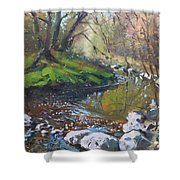 Creek In The Woods Shower Curtain by Ylli Haruni