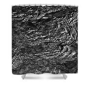 Creek Ripples B And W Shower Curtain