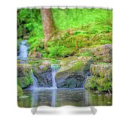 Creek1 Shower Curtain