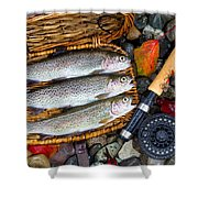 Creel With Native Trout  Shower Curtain