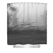 Creeping Branches Shower Curtain