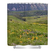 Crested Butte Valley Shower Curtain