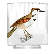 Crested Rustic 2 Shower Curtain