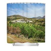 Crete Olive Grove Shower Curtain