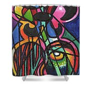 Creve Coeur Streetlight Banners Whimsical Motion 19 Shower Curtain