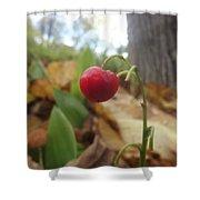 Crimson Berry Shower Curtain