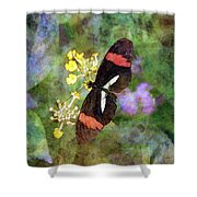 Crimson Longwing Butterfly 8231 Idp_2 Shower Curtain