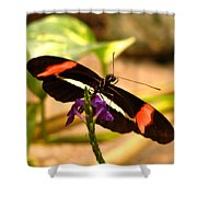 Crimson Patched Longwing 2 Shower Curtain