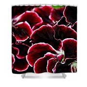 Crimson Propellers Shower Curtain
