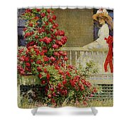 Crimson Rambler Shower Curtain by Philip Leslie Hale