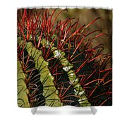 Crimson Thorns 2 Shower Curtain