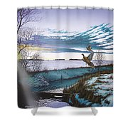 Crisp Winter Light Shower Curtain