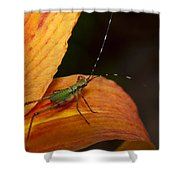 Critter-1 Shower Curtain