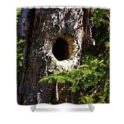 Critter Home Shower Curtain