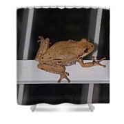 Critters 8-1 Shower Curtain