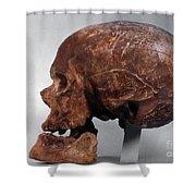 Cro-magnon Skull Shower Curtain
