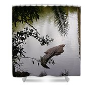 Croco Shower Curtain