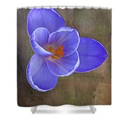 Crocus Focus Stacked 3 Shower Curtain