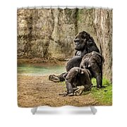Cross River Pregnant Gorilla And Children Shower Curtain