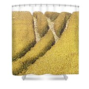 Crossed Lanes On Cornfield Shower Curtain