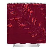 Crossing Branches 14 Shower Curtain