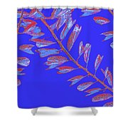 Crossing Branches 17 Shower Curtain