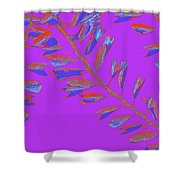 Crossing Branches 19 Shower Curtain