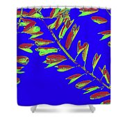 Crossing Branches10 Shower Curtain