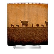 Crossing Kansas Shower Curtain
