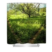 Crossing Paths Shower Curtain