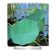 Crossing The Lily Pond Outback Nubmer Two Square Shower Curtain