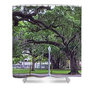 Crossing Trees Shower Curtain