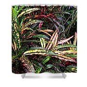 Croton 1 Shower Curtain