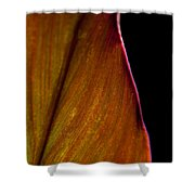 Croton Leaf Shower Curtain