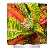 Croton Leaves Shower Curtain