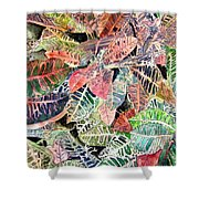 Croton Tropical Art Print Shower Curtain
