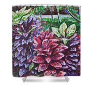 Crotons 1 Shower Curtain