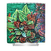 Crotons 3 Shower Curtain
