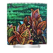Crotons 4 Shower Curtain