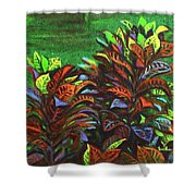 Crotons 6 Shower Curtain