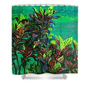 Crotons 7 Shower Curtain